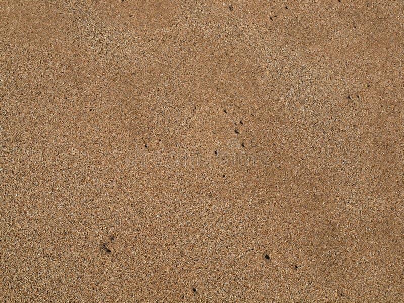 Sabbia della spiaggia del Maui immagini stock libere da diritti