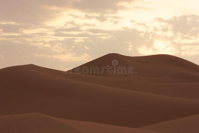 Sabbia Dubai - Emirati Arabi Uniti - Medio Oriente del deserto immagine stock