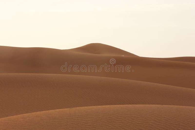 Sabbia Dubai - Emirati Arabi Uniti - Medio Oriente del deserto immagini stock libere da diritti