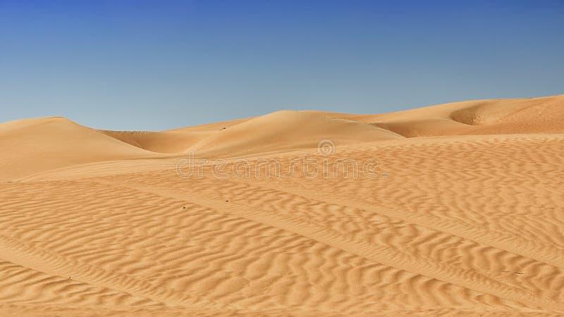 Sabbia e dune del deserto immagine stock libera da diritti