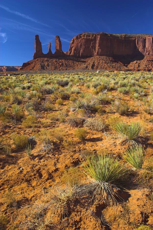 Sabbia rossa in deserto rosso fotografia stock