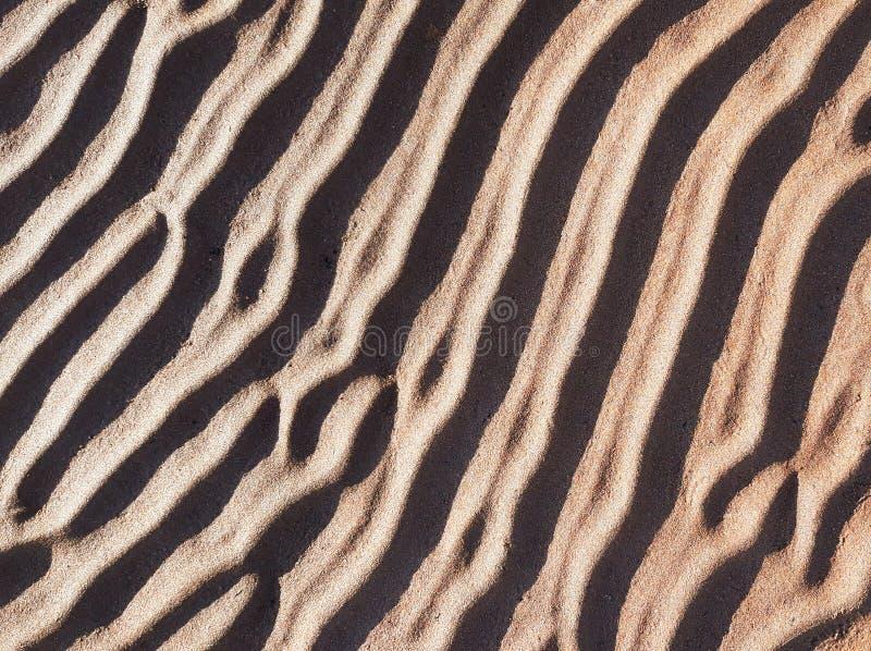 Sabbia strutturata naturale sulle dune di sabbia Spiaggia sabbiosa nella sera, fondo con le linee sulla sabbia fotografia stock libera da diritti