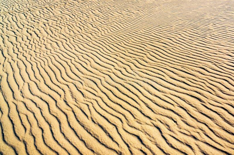 Download Sabbia sulle dune immagine stock. Immagine di caldo, yellow - 56878789