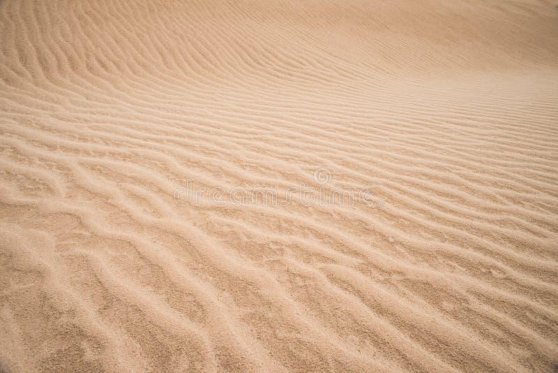 Sabbie del deserto immagini stock libere da diritti