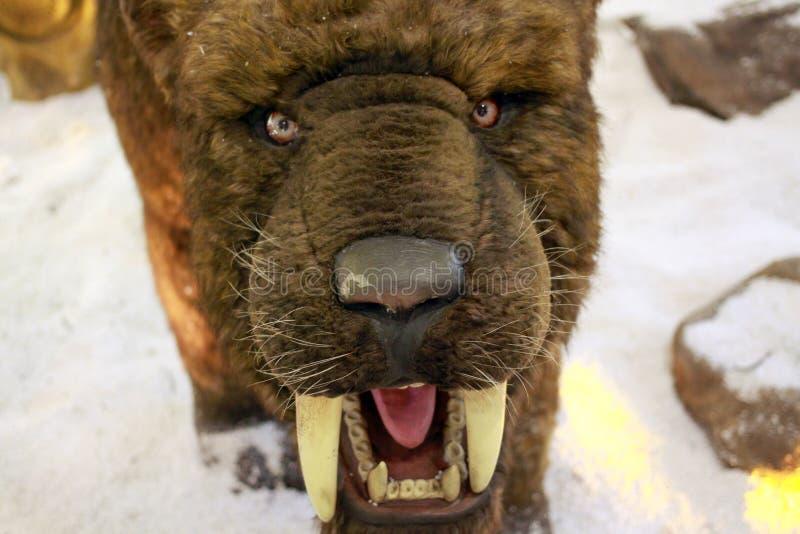 Saber - οδοντωτή τίγρη στοκ εικόνα με δικαίωμα ελεύθερης χρήσης
