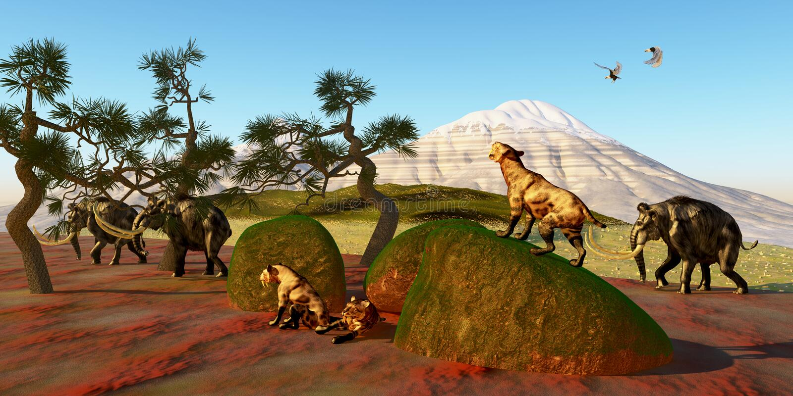 Saber Toothed Cat Family. A family of Saber Toothed Tigers watch as a herd of Woolly Mammoths pass by their den royalty free stock image