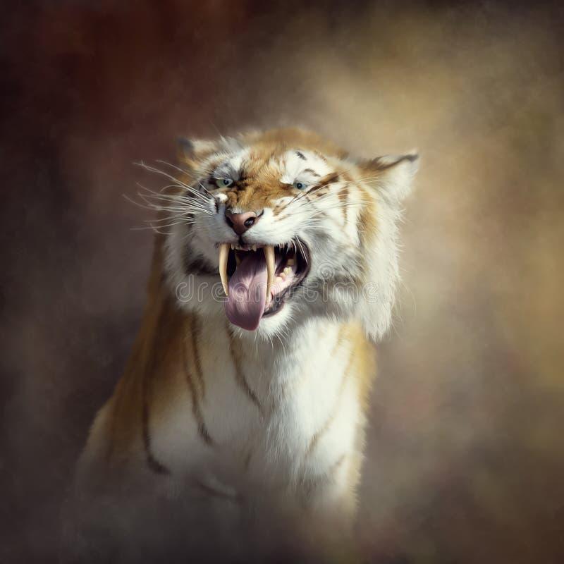 Sabertooth tygrysa portret zdjęcia stock