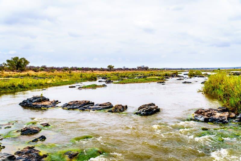 Sabie River con una cierta corriente en noviembre, el final de la estación seca, en el parque nacional de Kruger imagen de archivo