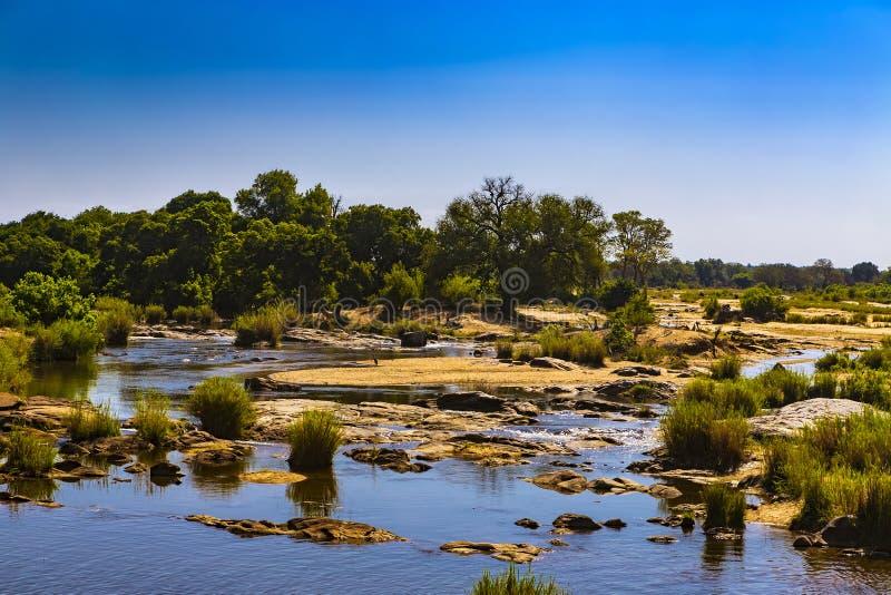 Sabie River, parque nacional de Kruger imagenes de archivo