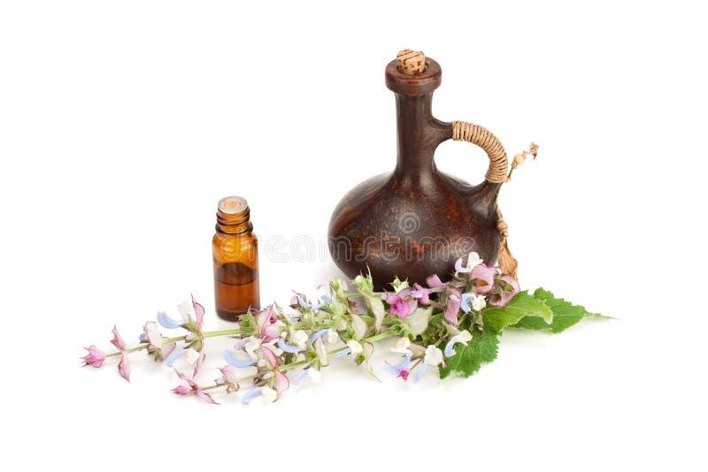 Sabio floreciente y aceite fragante fotografía de archivo libre de regalías