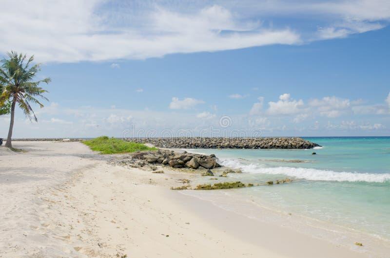 Sable blanc et pierres d'océan bleu d'île Maldive de paysage à terre image stock