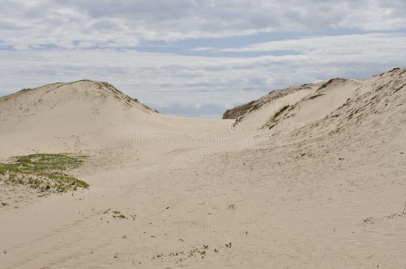 Sable blanc sur la plage avec des dunes dans l'été avec un ciel bleu image stock