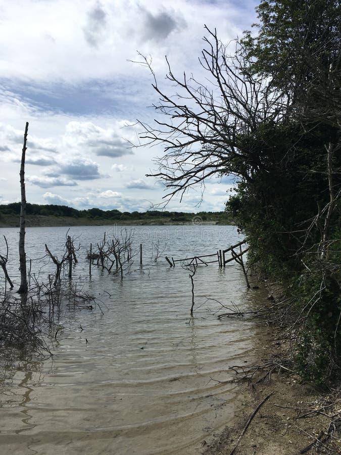 Sable, branches, l'eau image libre de droits
