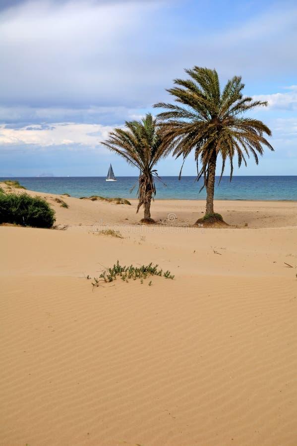 sable de dune photographie stock libre de droits