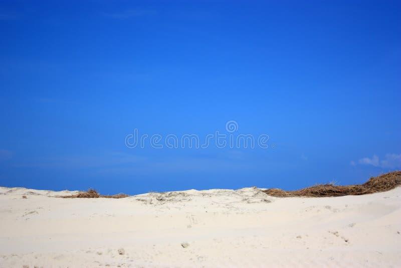 sable de dune photo stock
