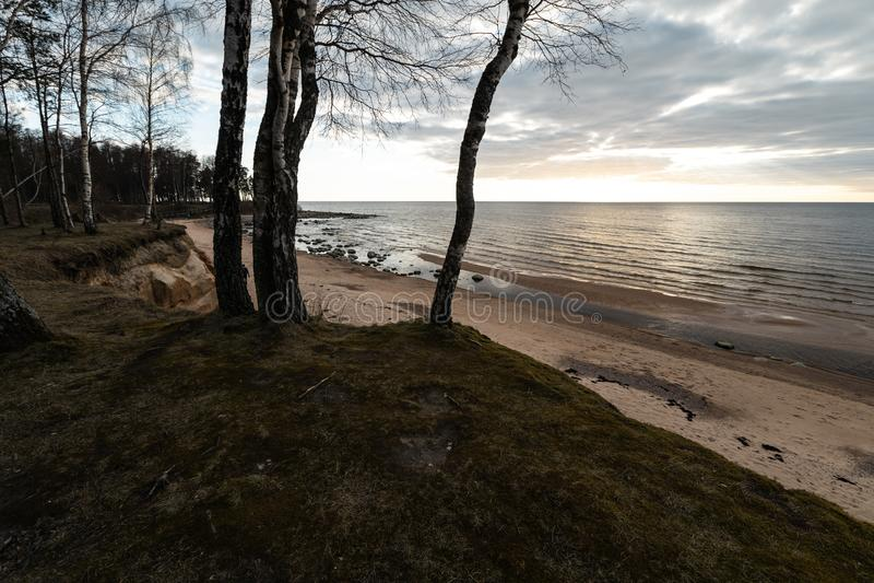 Sable de mousse et ciel nuageux sur la plage sur la mer baltique - Veczemju Klintis, Lettonie - 13 avril 2019 photographie stock libre de droits
