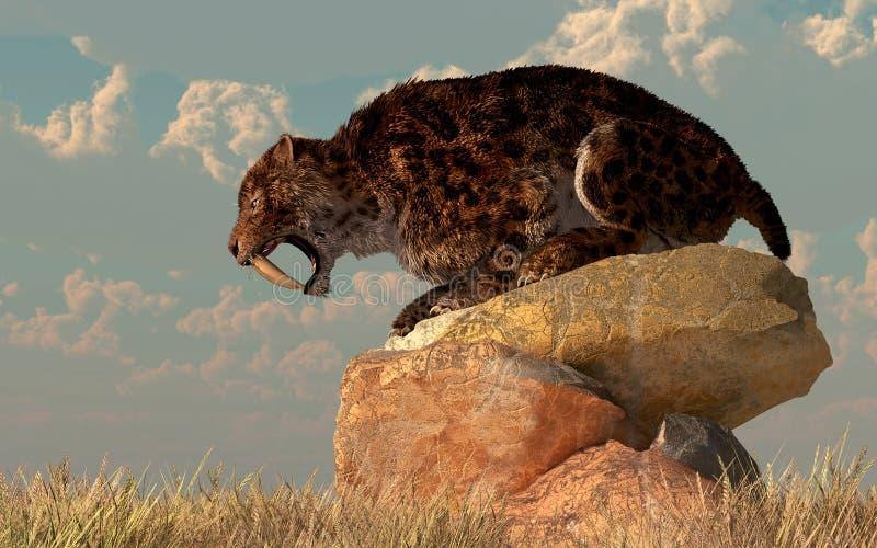 Sable-diente en rocas ilustración del vector