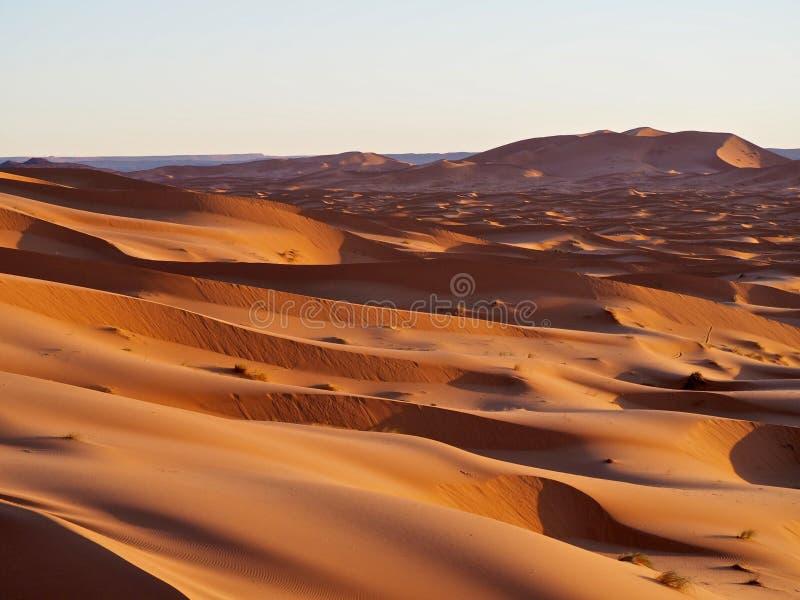sable du Sahara de dunes de désert photo stock