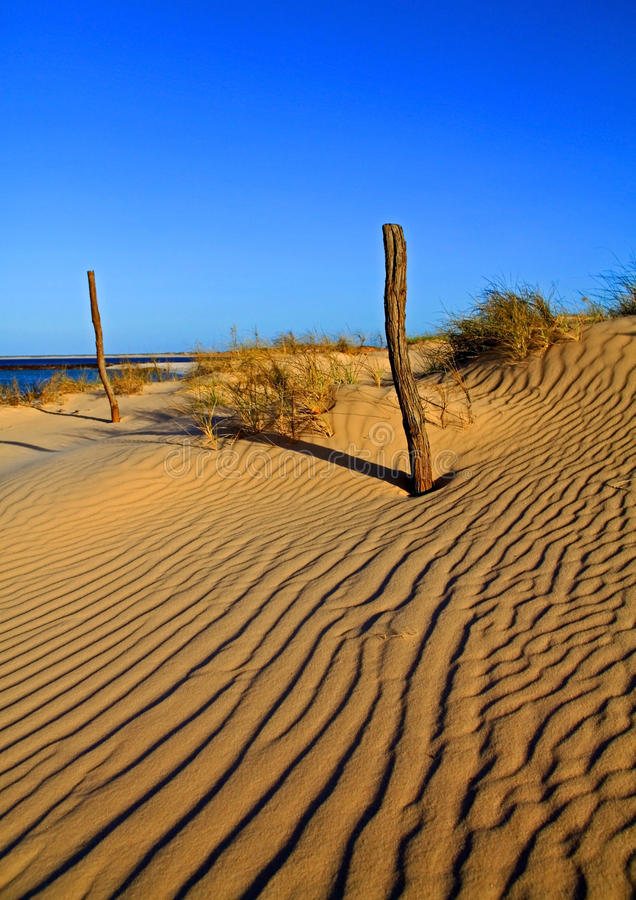 Sable-dunes images stock