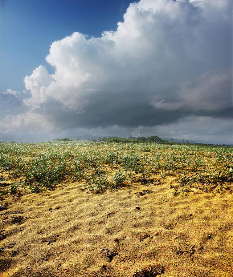 Sable humide photo libre de droits