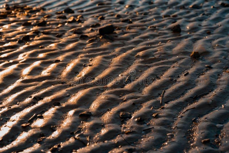 Sable onduleux d'or E éclat du soleil sur le rivage image stock