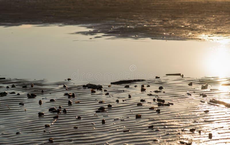 Sable onduleux d'or E ?clat du soleil sur le rivage photo stock