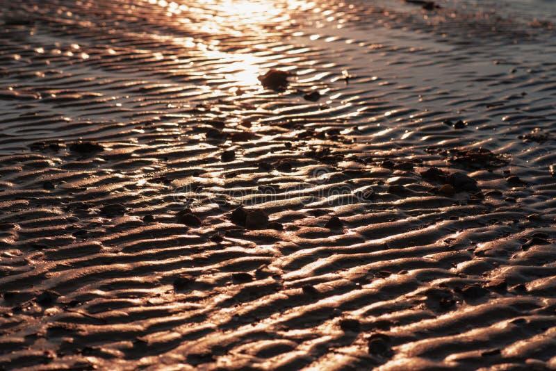 Sable onduleux d'or E ?clat du soleil sur le rivage image libre de droits