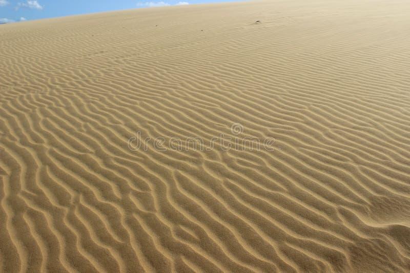 Sables de désert photo libre de droits