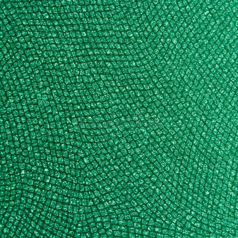 Sabot animal et Textur de peau de reptile de qualité photos stock