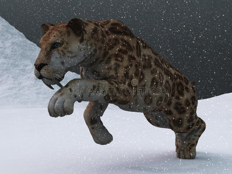 Sabre-toothed tiger in ice age blizzard. Ice age sabre toothed tiger prowling through snow storm on frozen tundra vector illustration
