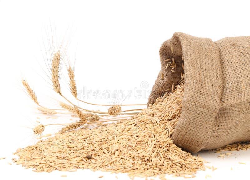Sac avec des grains et oreille de blé. image libre de droits
