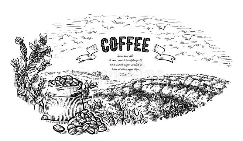 Sac et buisson de paysage de plantation de café dans le vecteur tiré par la main de style graphique illustration stock