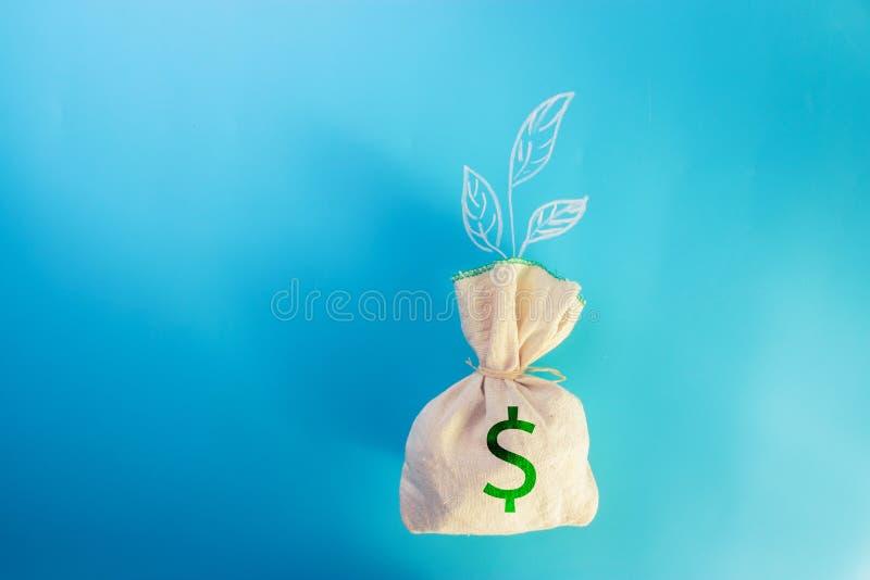 Sac et pousse d'argent image libre de droits