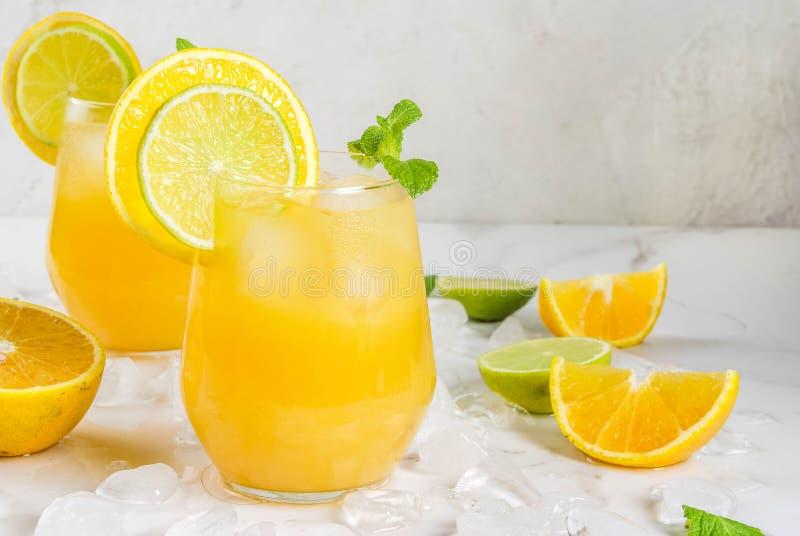 Sacador de la fruta cítrica del verano con las naranjas y la cal foto de archivo libre de regalías