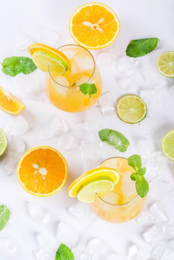 Sacador de la fruta cítrica del verano con las naranjas y la cal imagenes de archivo