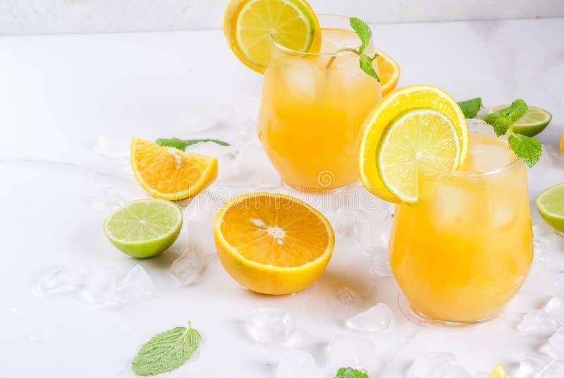 Sacador de la fruta cítrica del verano con las naranjas y la cal fotos de archivo libres de regalías