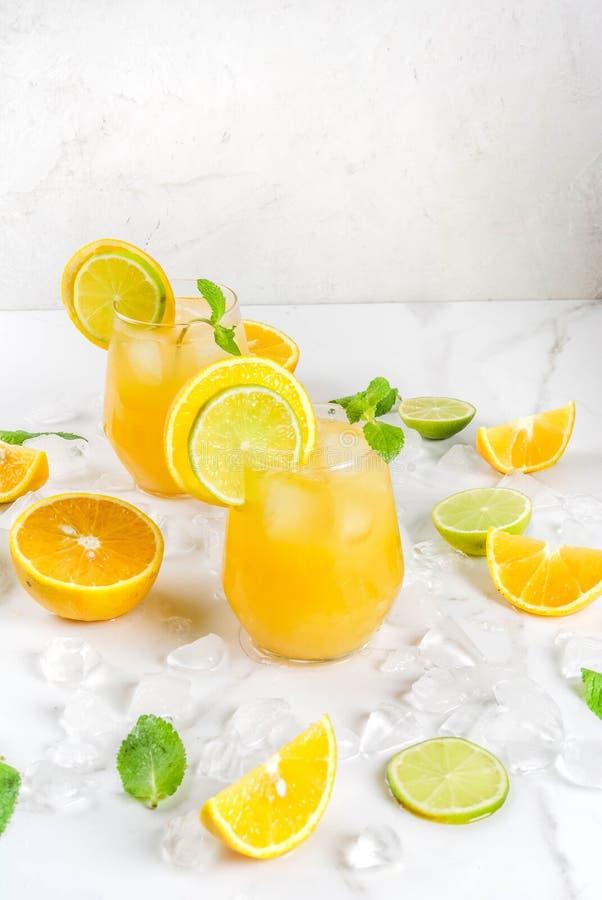 Sacador de la fruta cítrica del verano con las naranjas y la cal foto de archivo