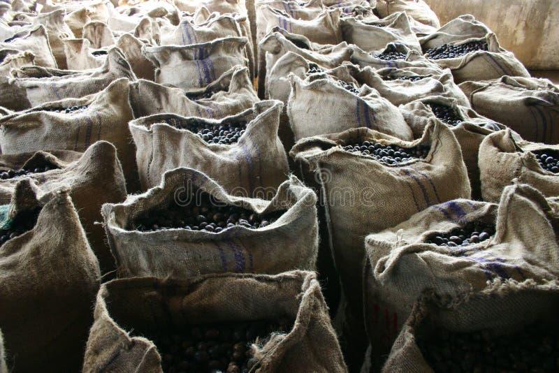 Sacchetti delle noci moscate immagini stock libere da diritti