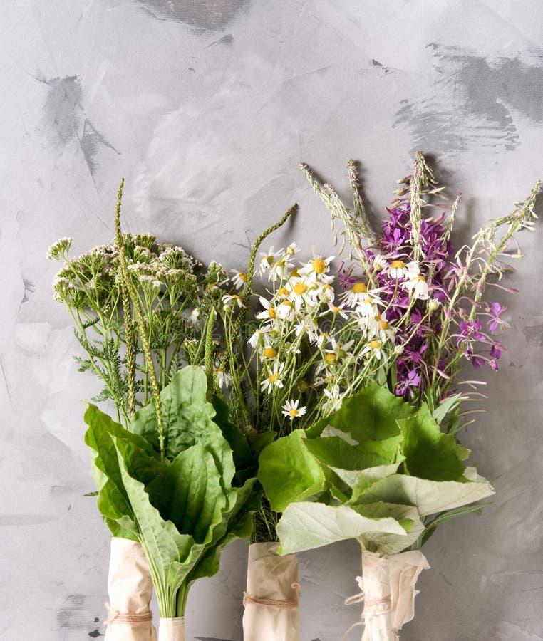 Sacchetti di piante medicinali fresche sul tavolo immagine stock