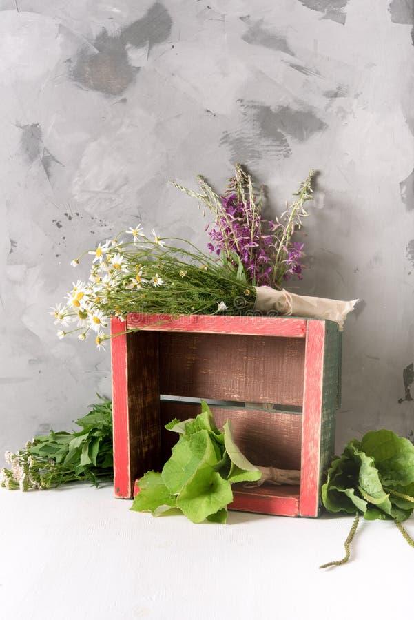 Sacchetti di piante medicinali fresche in una scatola sul tavolo fotografie stock libere da diritti