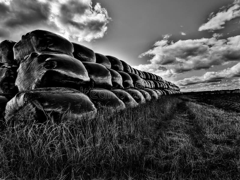 Sacchetti neri in un campo fotografie stock libere da diritti