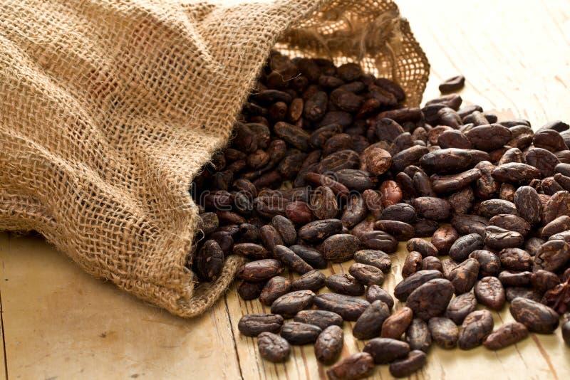 Sacchetto della iuta con le fave di cacao immagini stock
