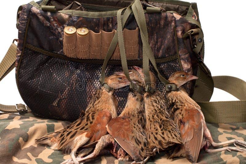 Sacchetto ed uccello di Fowling. fotografia stock
