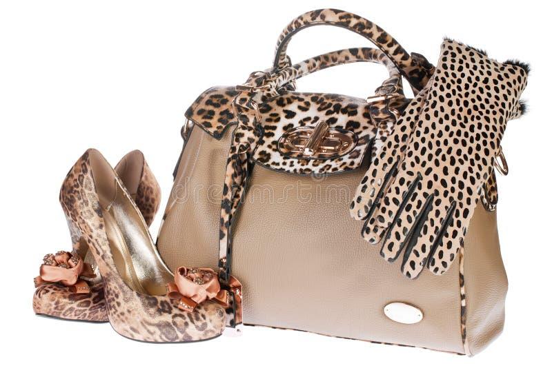 Sacchetto, pattini e guanti del leopardo fotografia stock