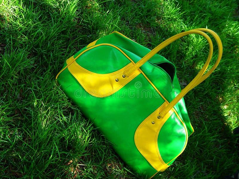 Download Sacchetto Verde Di Estate Su Erba Immagine Stock - Immagine di divertimento, ombra: 208435