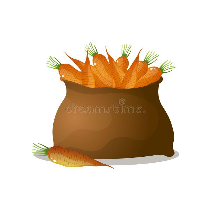 Sacco marrone pieno dell'arancia, fresco, carote di eco illustrazione di stock