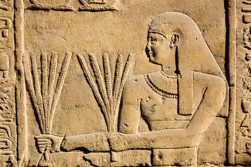 Sacerdote egipcio antiguo con trigo foto de archivo libre de regalías