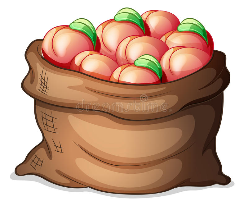 A sack of apples. Illustration of a sack of apples on a white background stock illustration