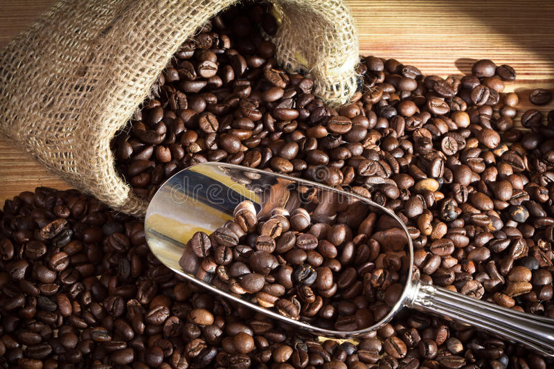 Sack with coffee beans royalty free stock image