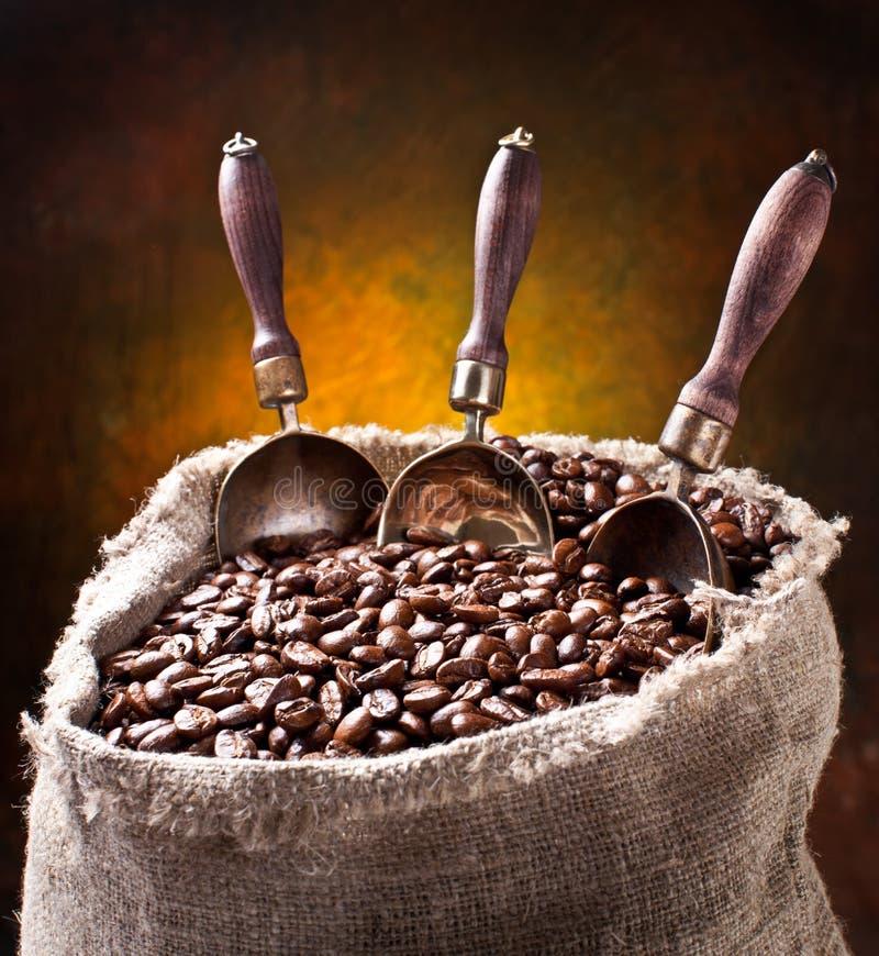 Sack der Kaffeebohnen und der Schaufel. stockbilder